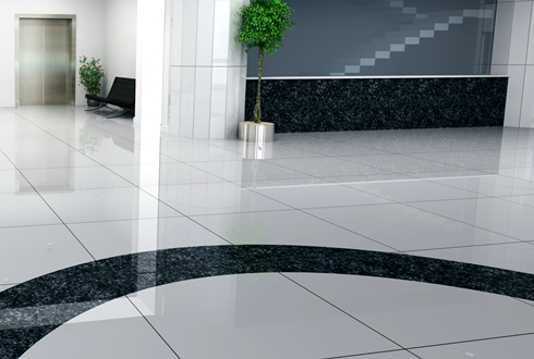 Flooring & Carpet Care Services